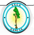 Empleados del Caucho. Rama Industria. C.C.T. Nº 375/04. (S.E.C.A. – F.A.I.C.) Homologación Acuerdo Abril 2013. Asignación No Remunerativa. Resolución S.T. Nº 721/13 (B.O. 12/08/2013).