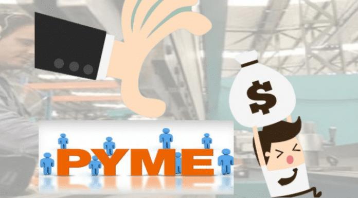 micro pequeñas y medianas empresas