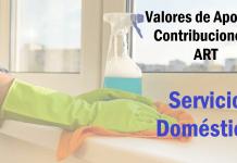 aportes contribuciones y art servicio domestico